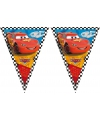 Vlaggenslinger van Cars 3 meter
